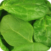 Jam-packed with nutrients, spinach is rich in carotenoids and folic acids  that provide lasting health benefits.