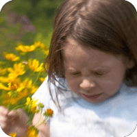Allergy Chiropractor Near Me | Get Allergy Relief | Chiropractic Allergy Care for Citrus Heights, Roseville, Folsom, Antelope, Fair Oaks, Orangevale, Carmichael, and Sacramento